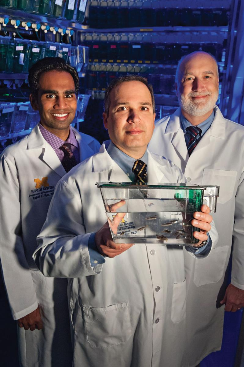 Rajesh Rao, M.D., Alon Kahana, M.D., Ph.D., and Peter Hitchcock, Ph.D.